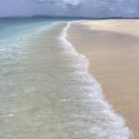 Neil beach