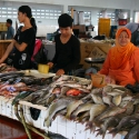 Tawau Fish Market