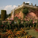 Nishat Bagh Mugal Gardens