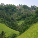 Hiking near Ubud