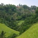 Hiking near Ubud
