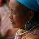 flower-hmong