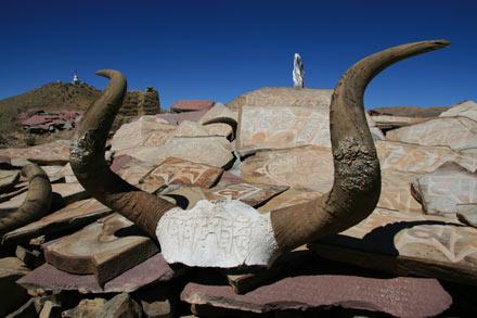 Engraved Yak Skull on Mani Stone Pile, Tibet