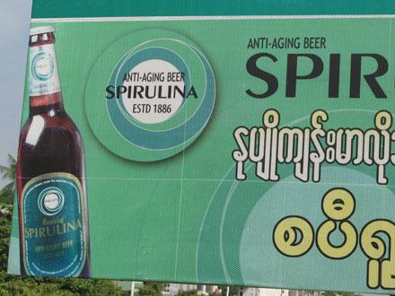 Spirulina Beer