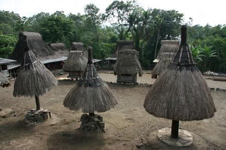 Ngadhu ; Simbol Budaya Etnis Ngada – Bajawa