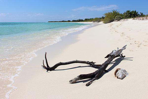 Stunning beach in Faro Celerain Eco Park