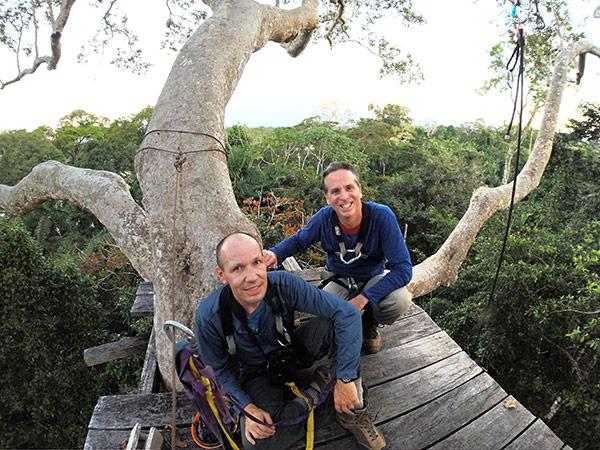 canopy climbing