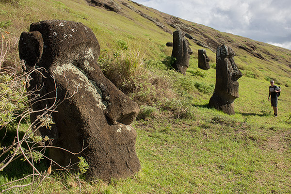 Inside the crater at Rano Raraku
