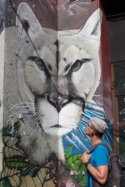 Amazing graffiti in Barrio Brasil, Santiago