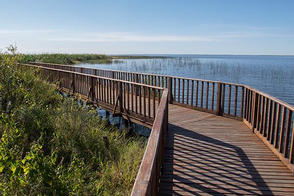Exploring  Iberá Wetlands, Argentina