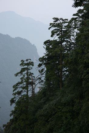Emei Shan Misty Landscape