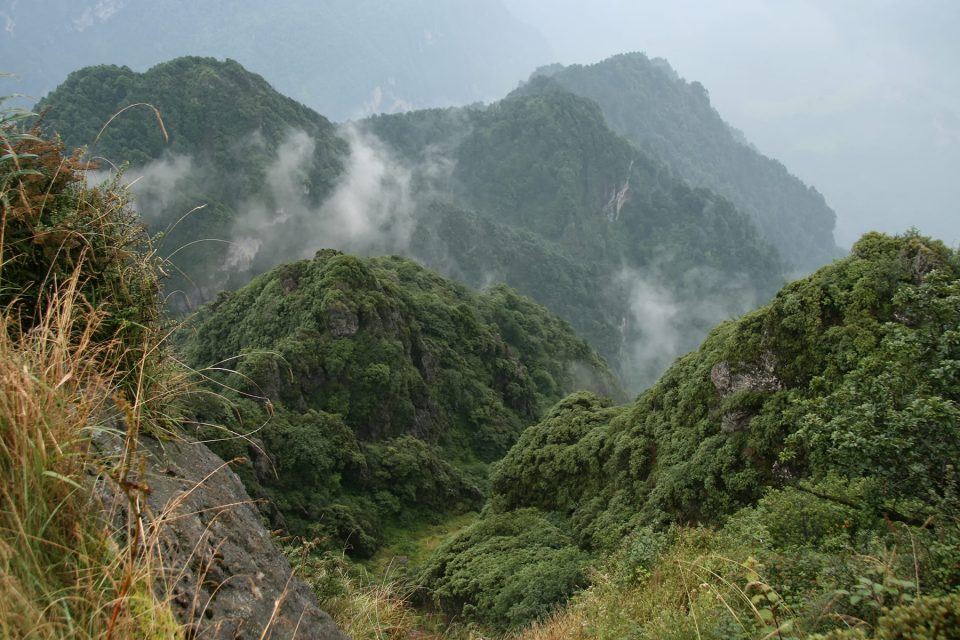 The mist slopes of Emei Shan