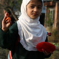 Kashmiri School Girl