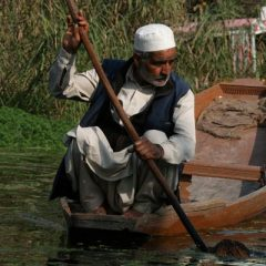 Kashmiri Man