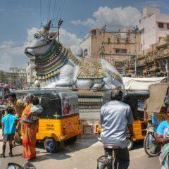 Madurai Street Scene