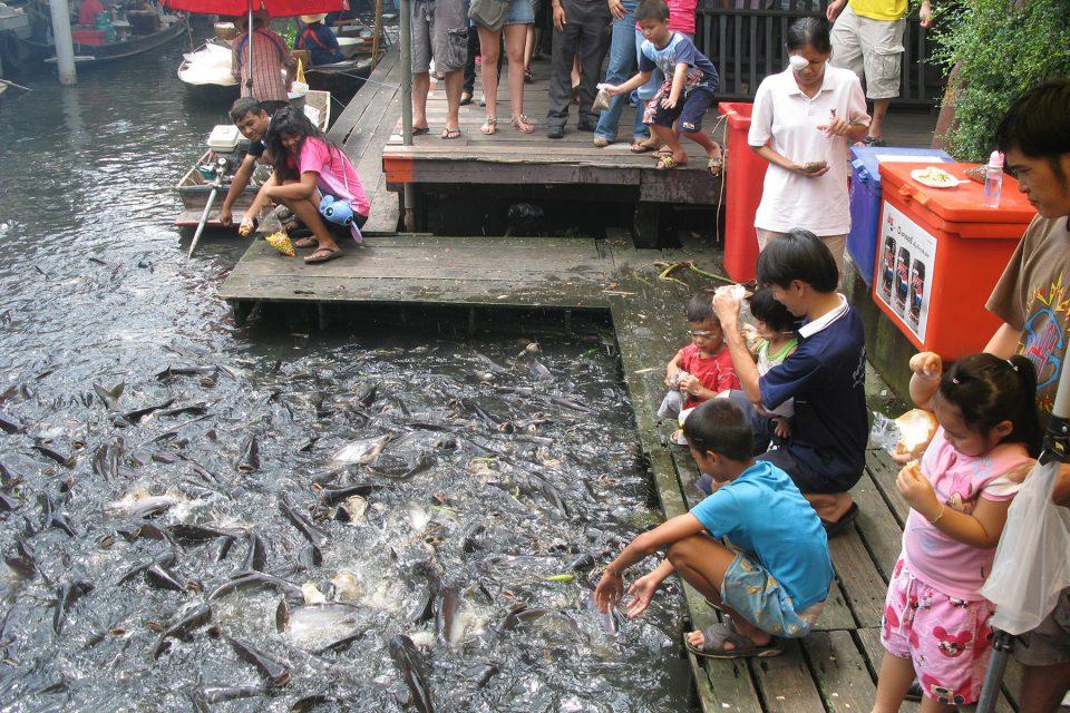 People feeding catfish at Taling Chan