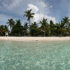 Malapascua Beaches