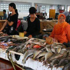 Tawau Fish Market