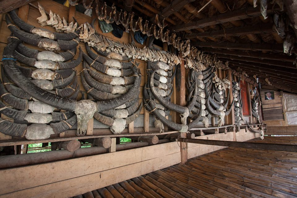 Buffalo skulls cover the entrance to a hut