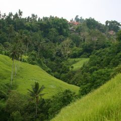 Campuan Ridge near Ubud