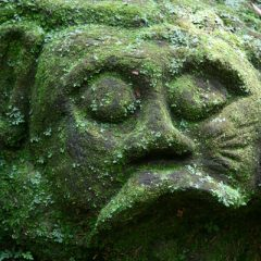 Moss-covered Stone Carving