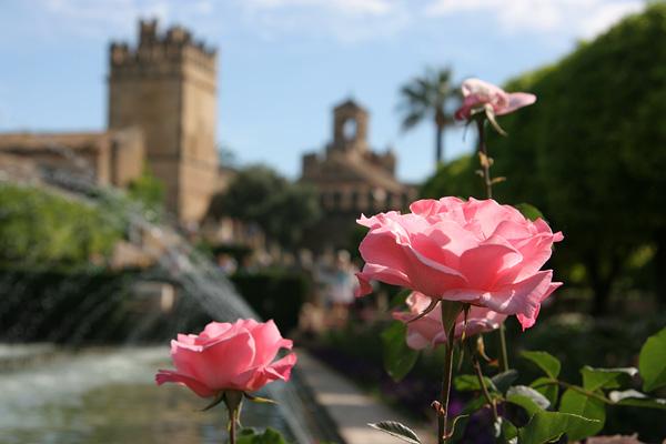 Cordoba's Alcázar de los Reyes Cristianos