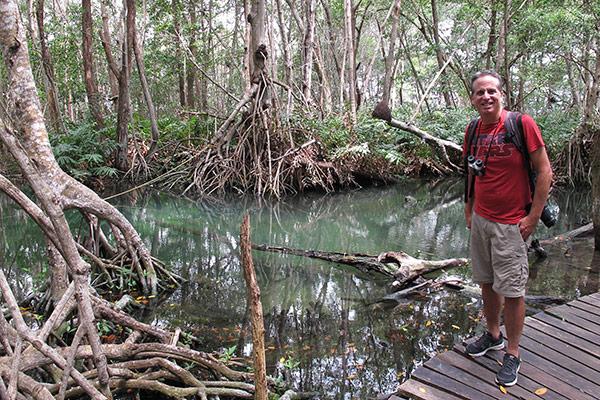 celestun-mangrove-tony