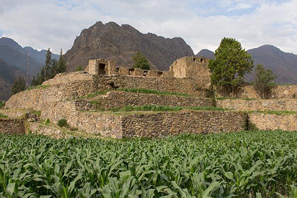 Quellorakay ruins in Ollantaytambo