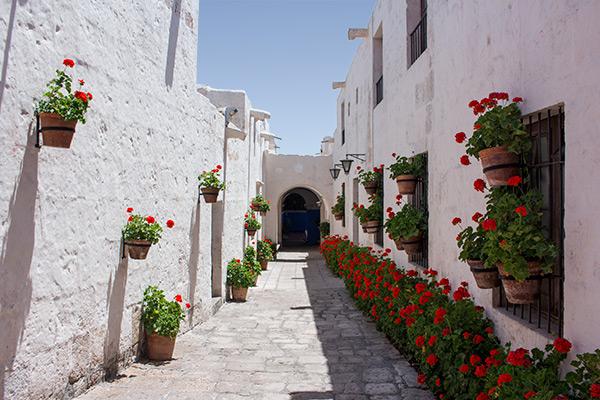 A white street in Monasterio de Santa Catalina