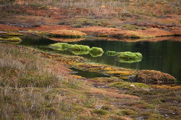 Colorful landscapes of Tierra del Fuego National Park
