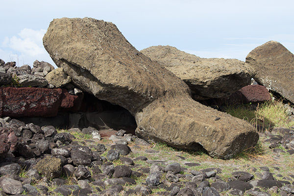 Toppled moai statues