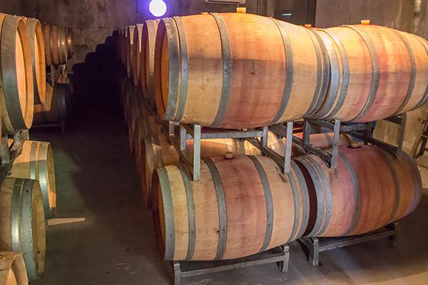 Wine cellar in Maipú
