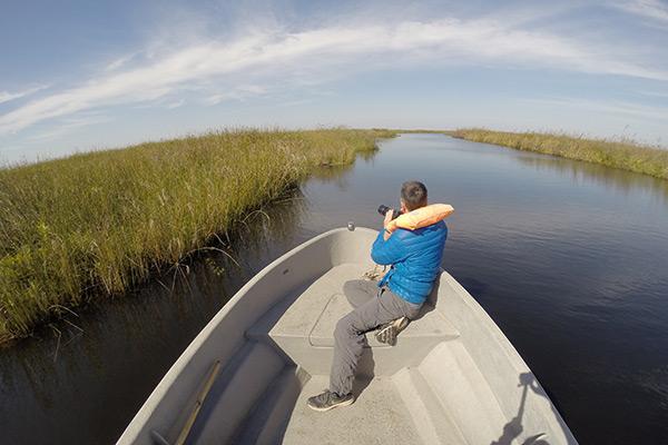 Motorboat ride through Iberá Wetlands