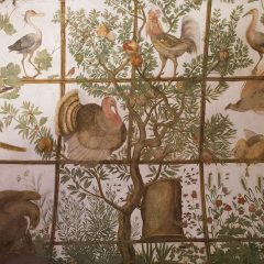 First depiction of a turkey in Europe, Villa Medici in Rome
