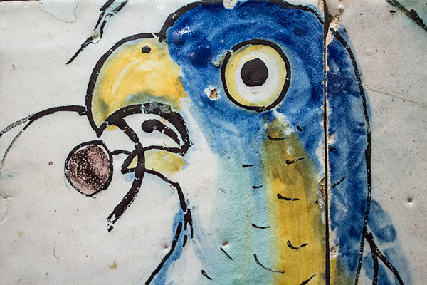 Parrot tile