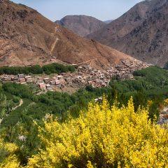 Trekking the High Atlas Mountains
