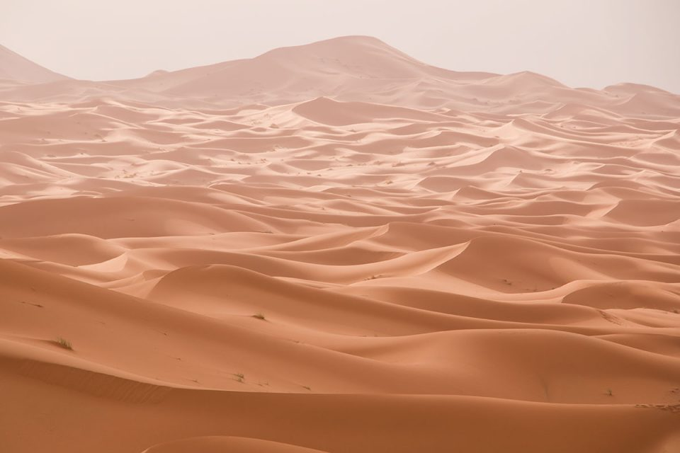 Vastness of Dunes of Merzouga