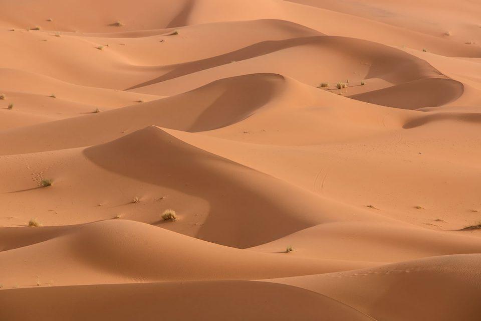 The Dunes of Merzouga