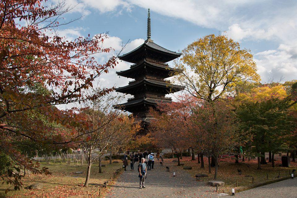 Thomas explores Kyoto's Todai-ji Temple