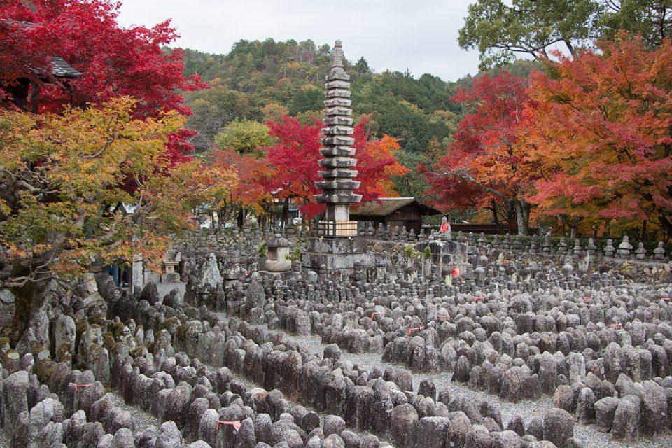 Autumn foliage in Kyoto's Adashino Nenbutsu-ji Temple