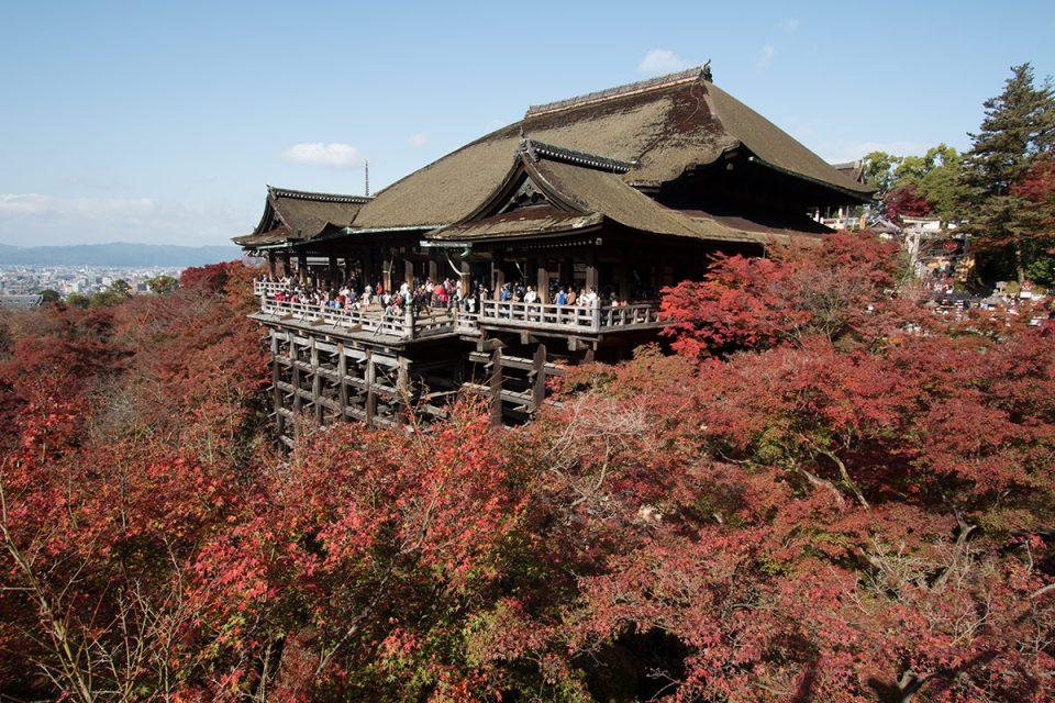Autumn foliage in Kyoto's Kiyomizu-dera Temple