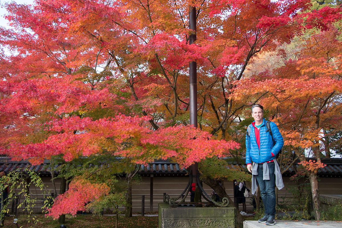 Kyoto Autumn Leaves At The Eikando Temple