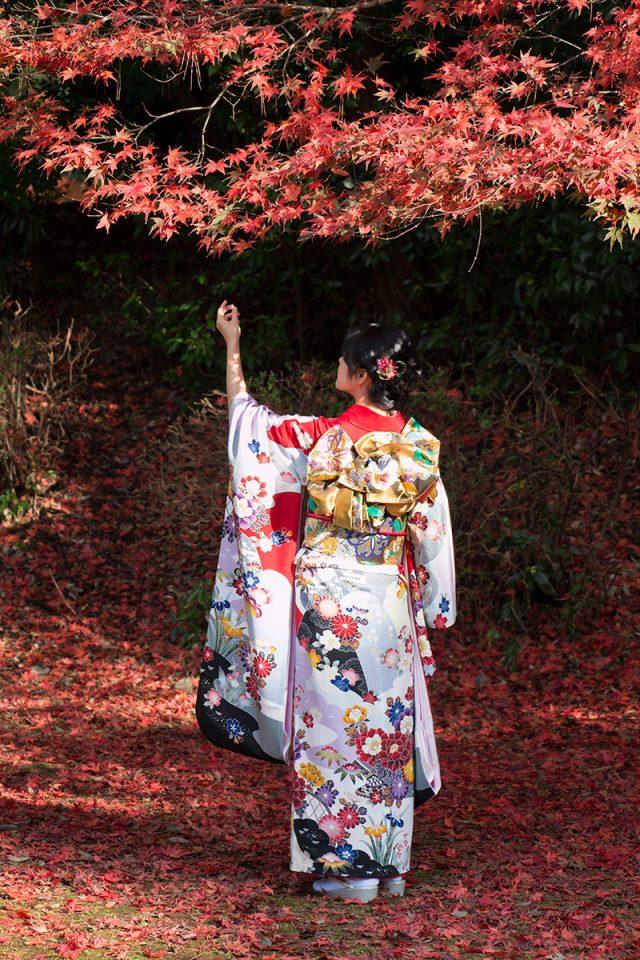 Autumn foliage in Kyoto's Daigo-ji Temple