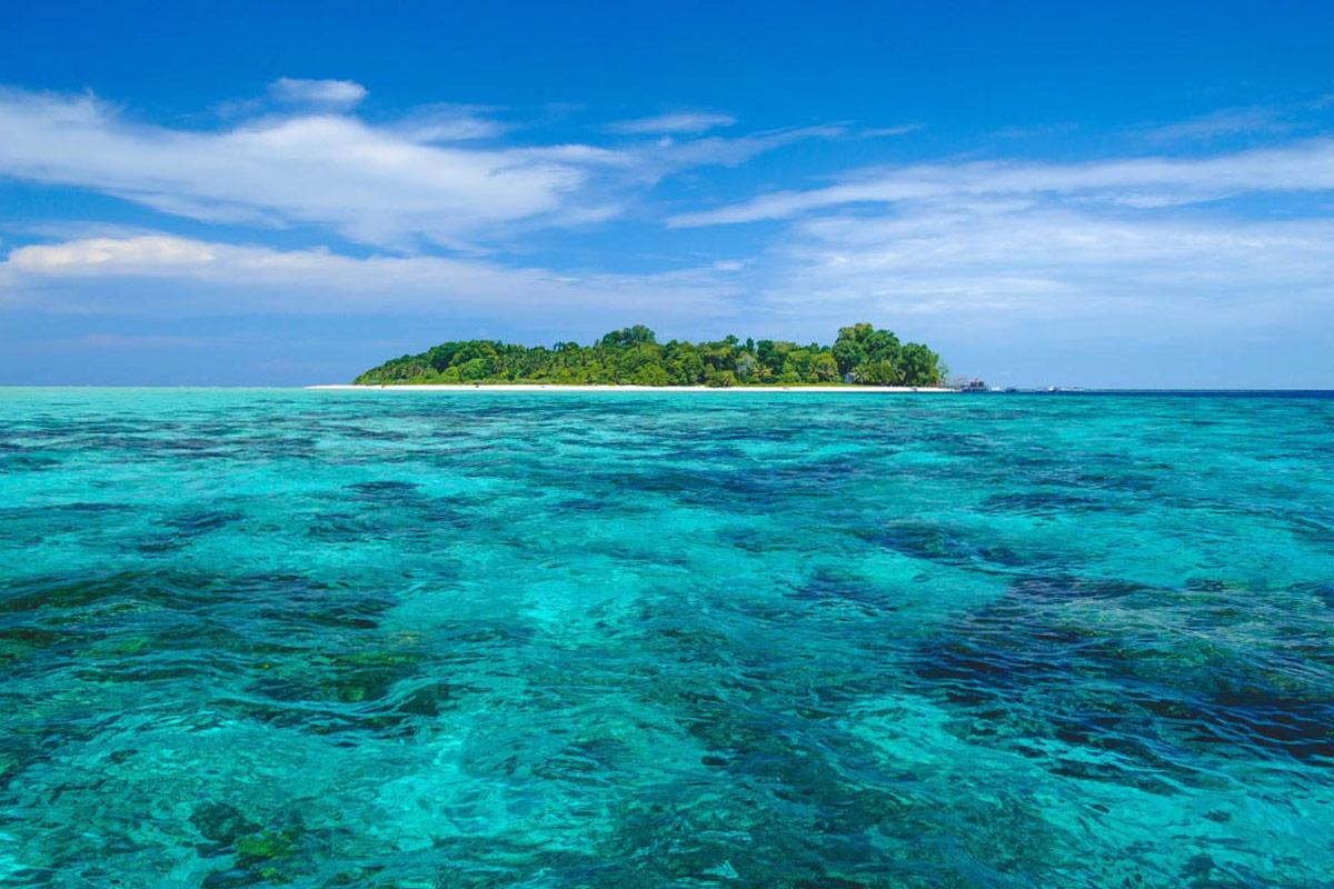 Sipadan and mabul borneo 39 s most popular dive - Sipadan dive sites ...