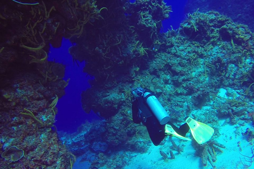 Caribbean honeymoon: Diving in Cozumel
