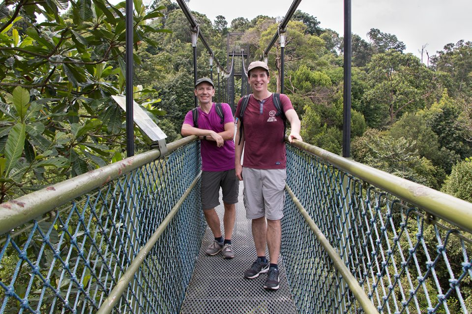 Things to do in Singapore: Tree top walk at Central Catchment Nature Reserve, Singapore