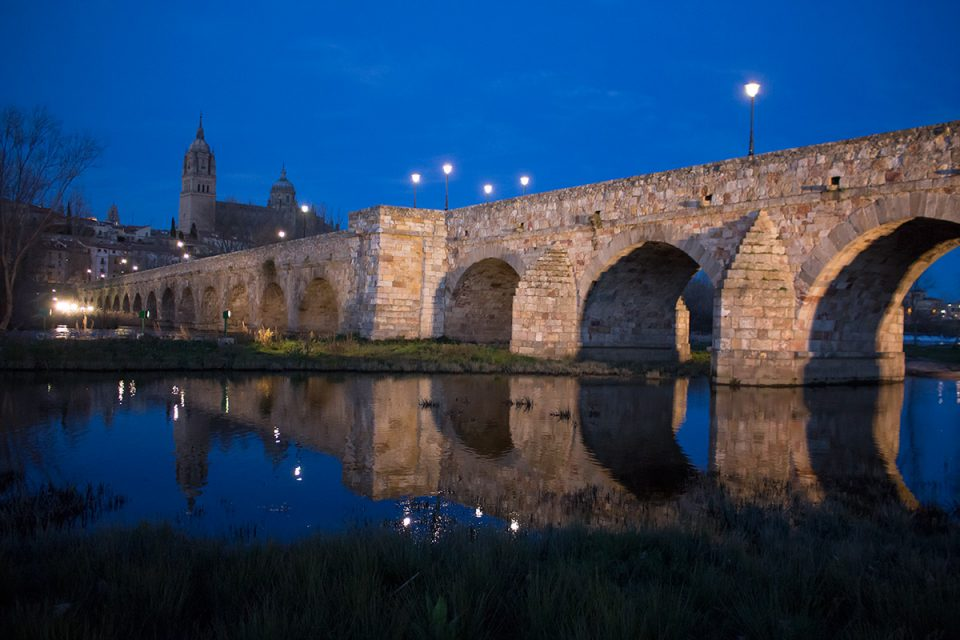Day trips from Madrid: View of Roman bridge and New Cathedral in Salamanca