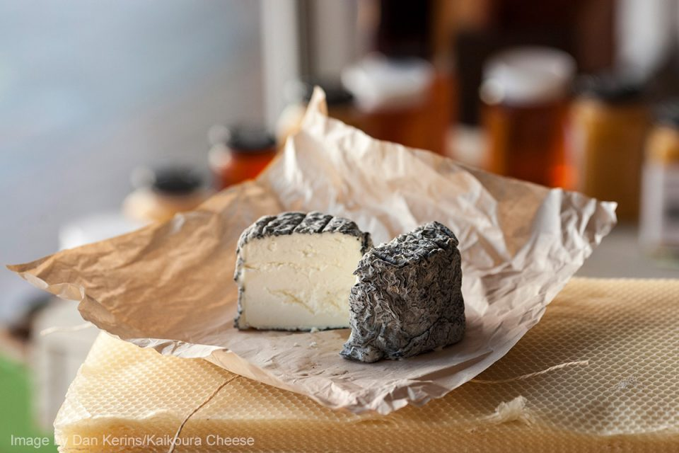 Things to Do in New Zealand: Kaikoura Cheese Tasting