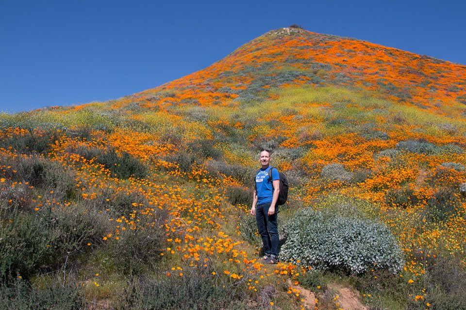 Thomas at the Walker Canyon Superbloom