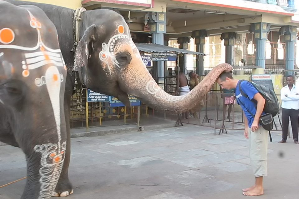 Tony getting blessed by an elephant